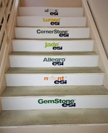 Floor Graphics - Stairs