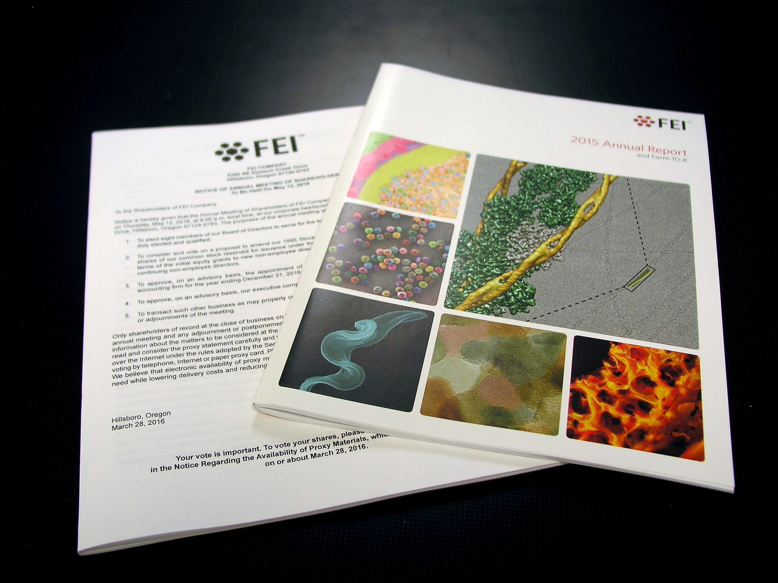 FEI Annual Reports